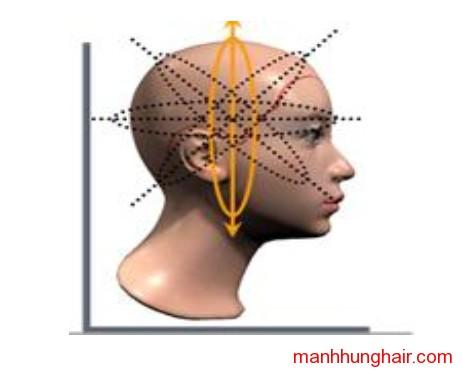 mảng tóc chia dọc